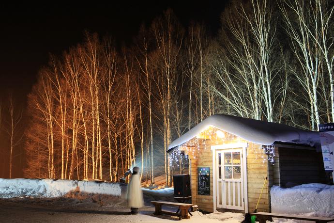 log cabin_01