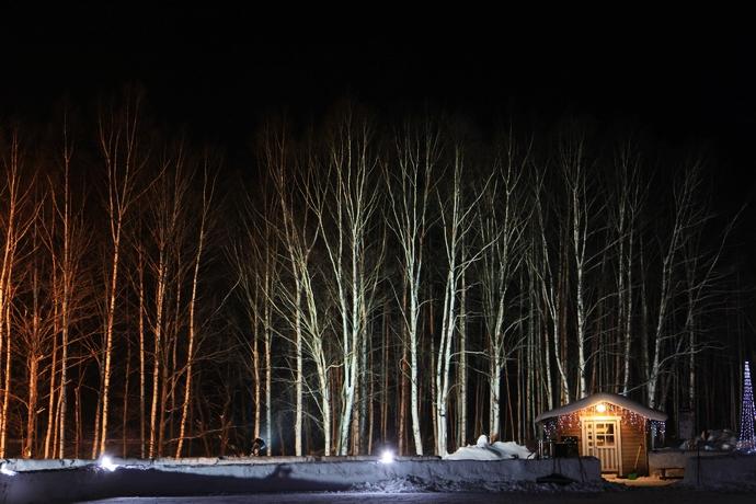 log cabin_02