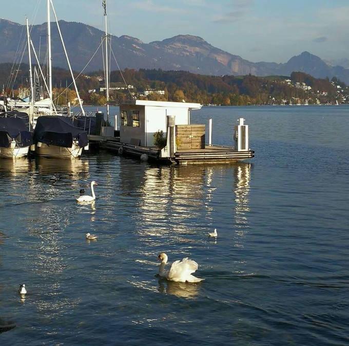 Lake Lucerne_07