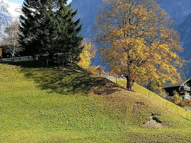 Jungfrau_04