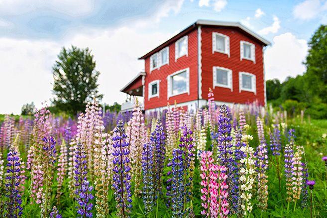 Tromso-Evenes_01
